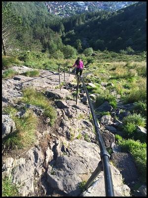 Ping hike 2